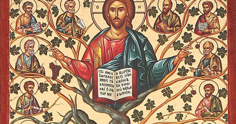 Il significato dell'albero della vita