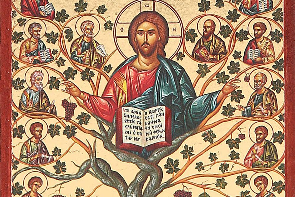 Il significato dell 39 albero della vita holyblog for Albero della vita significato