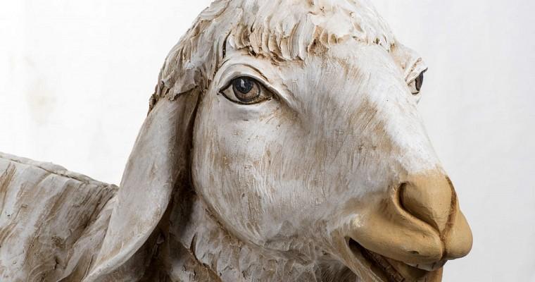 I versi degli animali per presepe di Holyart